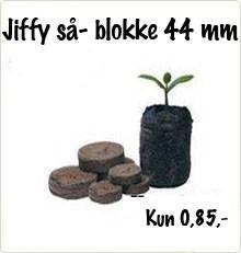 jiffy så blokke til planter