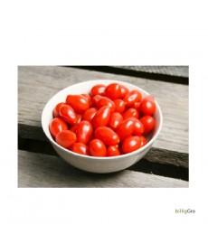 """meget lille blomme """"Ulla`s tomat"""
