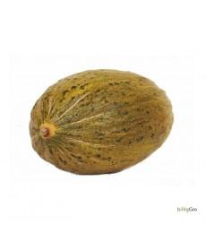 Grøn Ananas melon