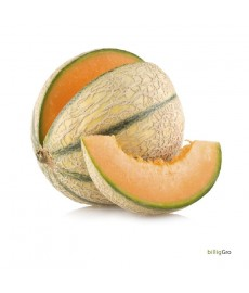 FRENCH MELON