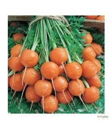 """Gulerod rund """"Heirloom cultivar"""" Økologisk"""