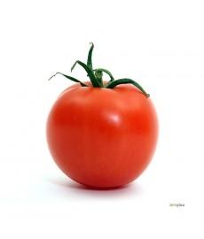Frø fra Alfred og katrine`s Tomat
