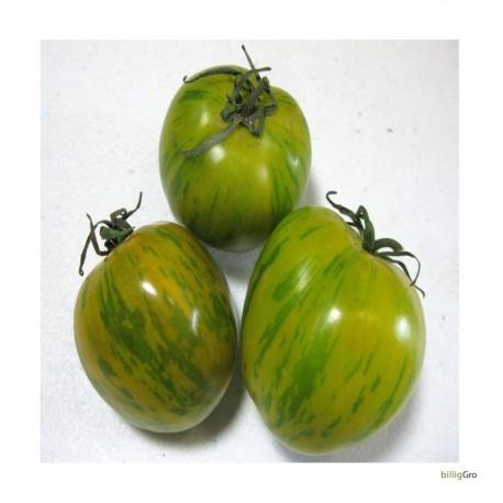 """""""Green Zebra"""" Tomatfrø"""