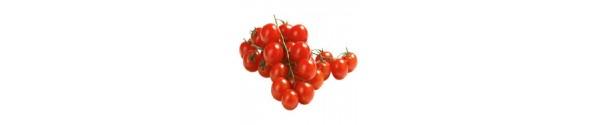 Frø til cherry tomat