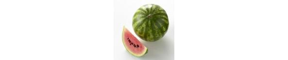 Melon m/m