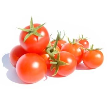 Frø til almindelig tomat