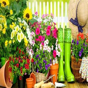 Tilbehør til planter/så