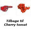 tomatfrø til cherrytomat