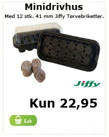 Minidrivhus med 12 stk. jiffy 41 mm