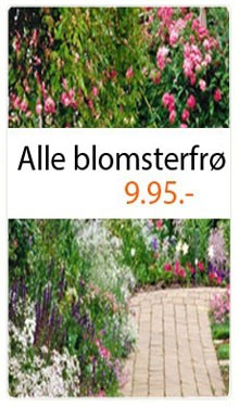 Alle blomsterfrø 9,95
