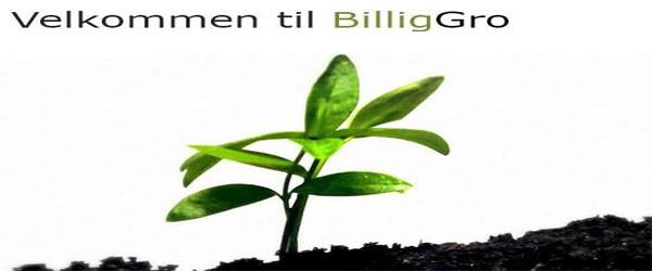 Billiggro_forside